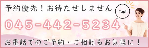 045-442-5234